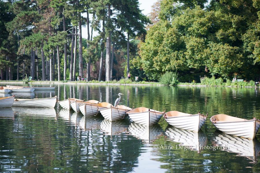 Lac Boulogne, barques, Bois, 92