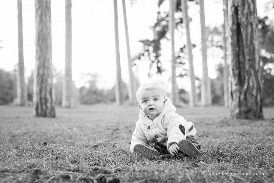 seance-photo-bebe-bois